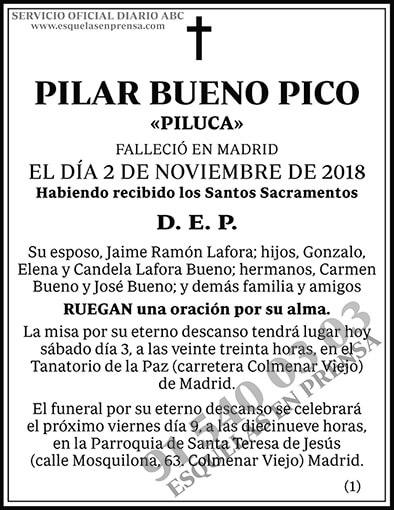 Pilar Bueno Pico